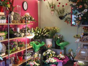 Shop interior - wide range of gifts
