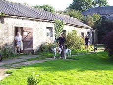 Barnlake Boarding Kennels and Cattery, Milford Haven
