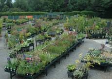 Burstow Nurseries & Garden Centre, Horley