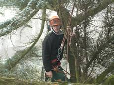 Carvells Tree Surgeons, Congleton