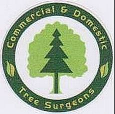 Commercial & Domestic Tree Surgeons, Scarborough