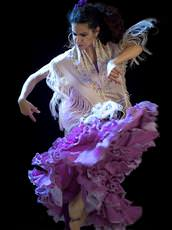 Academia Flamenca, Brighton and Hove