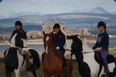 Seaview Riding School, Barrow-in-Furness