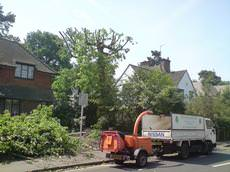 Evergreen Tree Surgery Fleet, Guildford