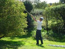 Eastern Tree Care, Norwich