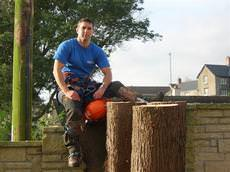 Arborcure Tree Services, Plymouth
