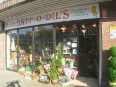 Daff-o-Dil's, Exmouth