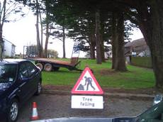 Cornwall Tree Surgery, Redruth