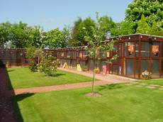 Cuddington Boarding Cattery, Cuddington