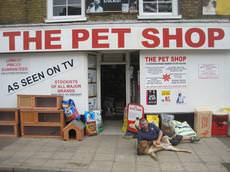 The Pet Shop, March, March