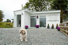 Clyde Valley Pet Retreat, Lanark