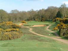 Woodbridge Golf Club, Woodbridge